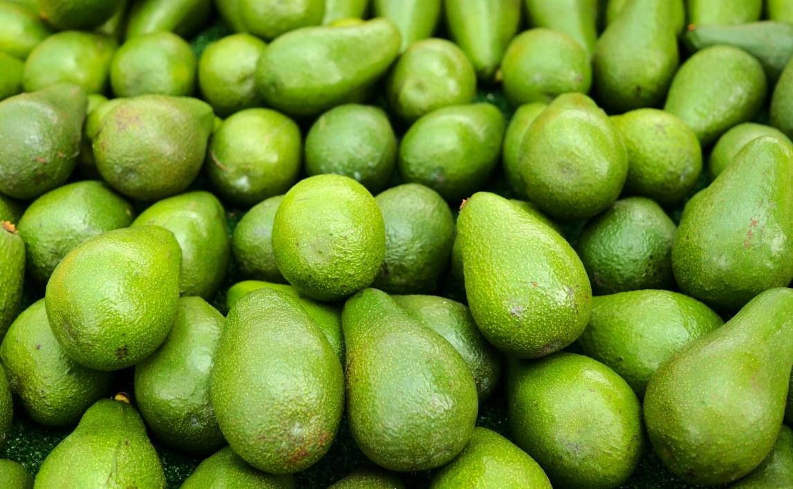 avocados fr her seltener luxus heute ganzj hrig und. Black Bedroom Furniture Sets. Home Design Ideas
