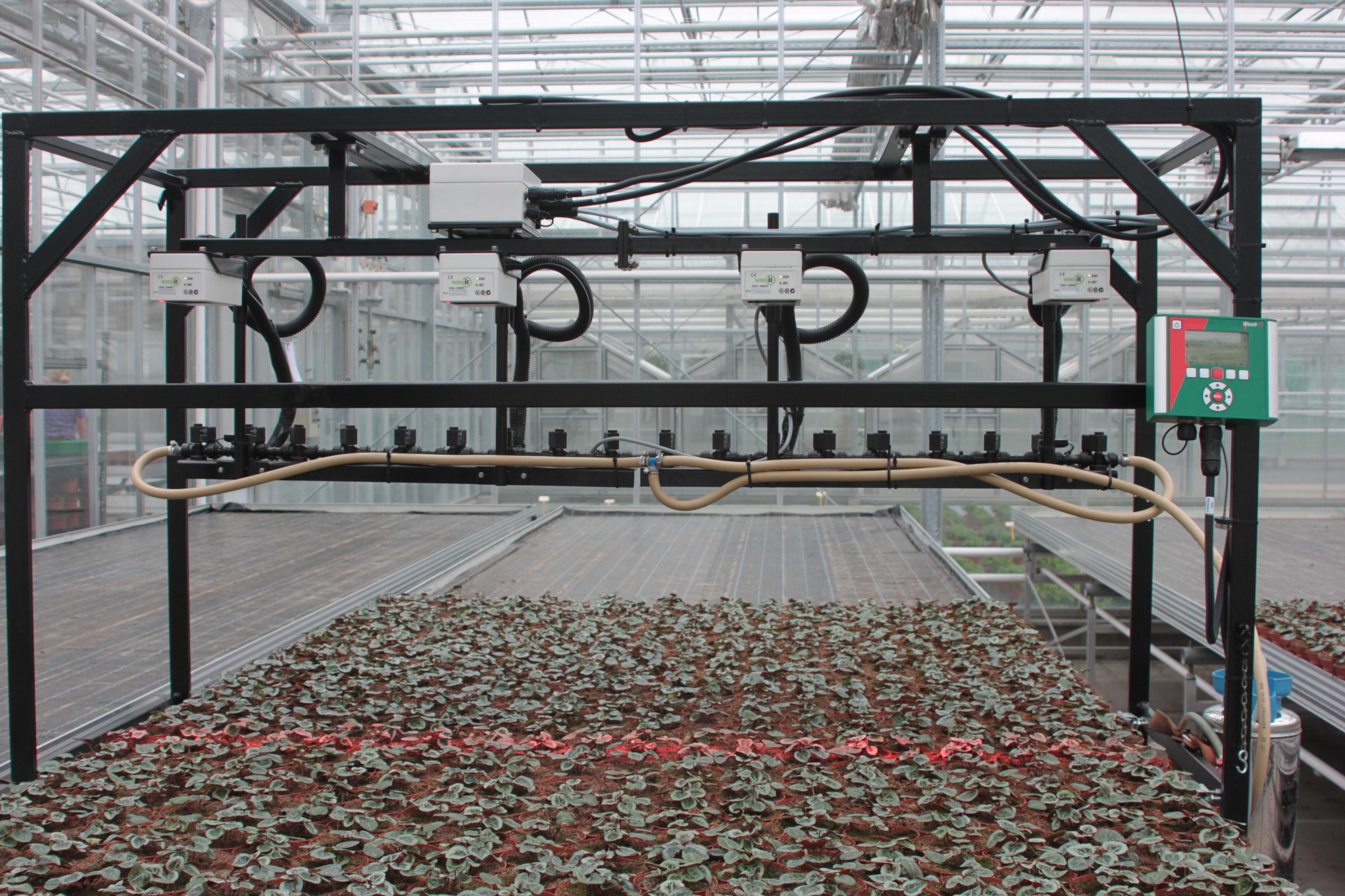 Gezonde Kas Pflanzenschutz Geht Im Gewachshaus Neue Wege