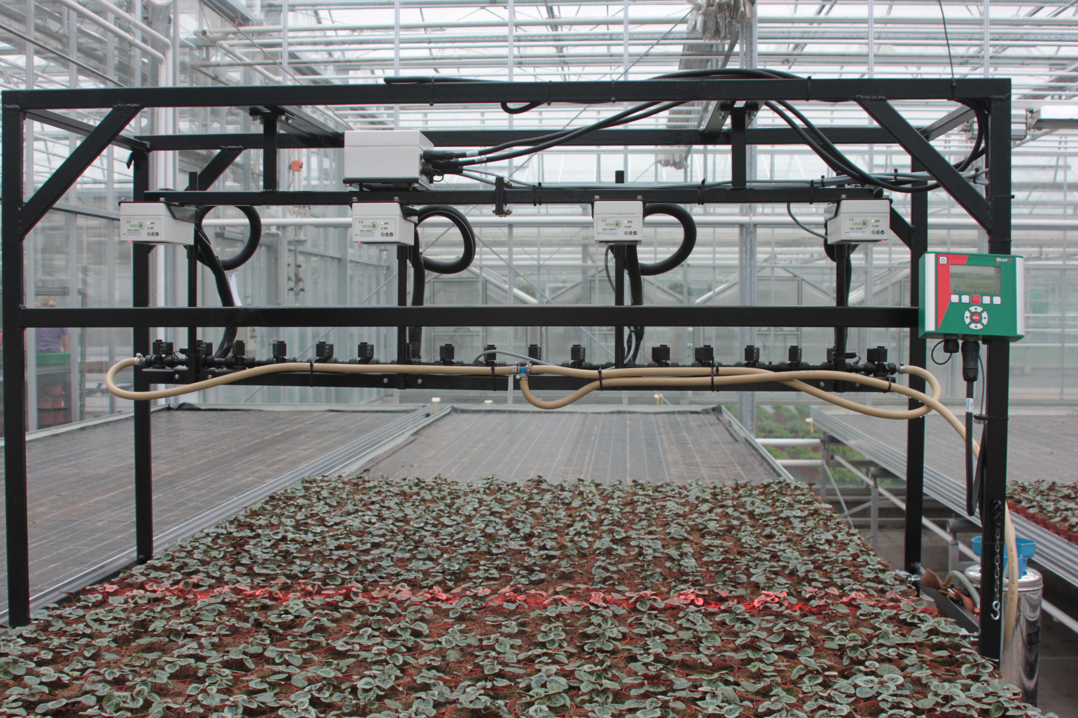 tomaten und gurken kommen ohne erde aus industrieverband agrar. Black Bedroom Furniture Sets. Home Design Ideas