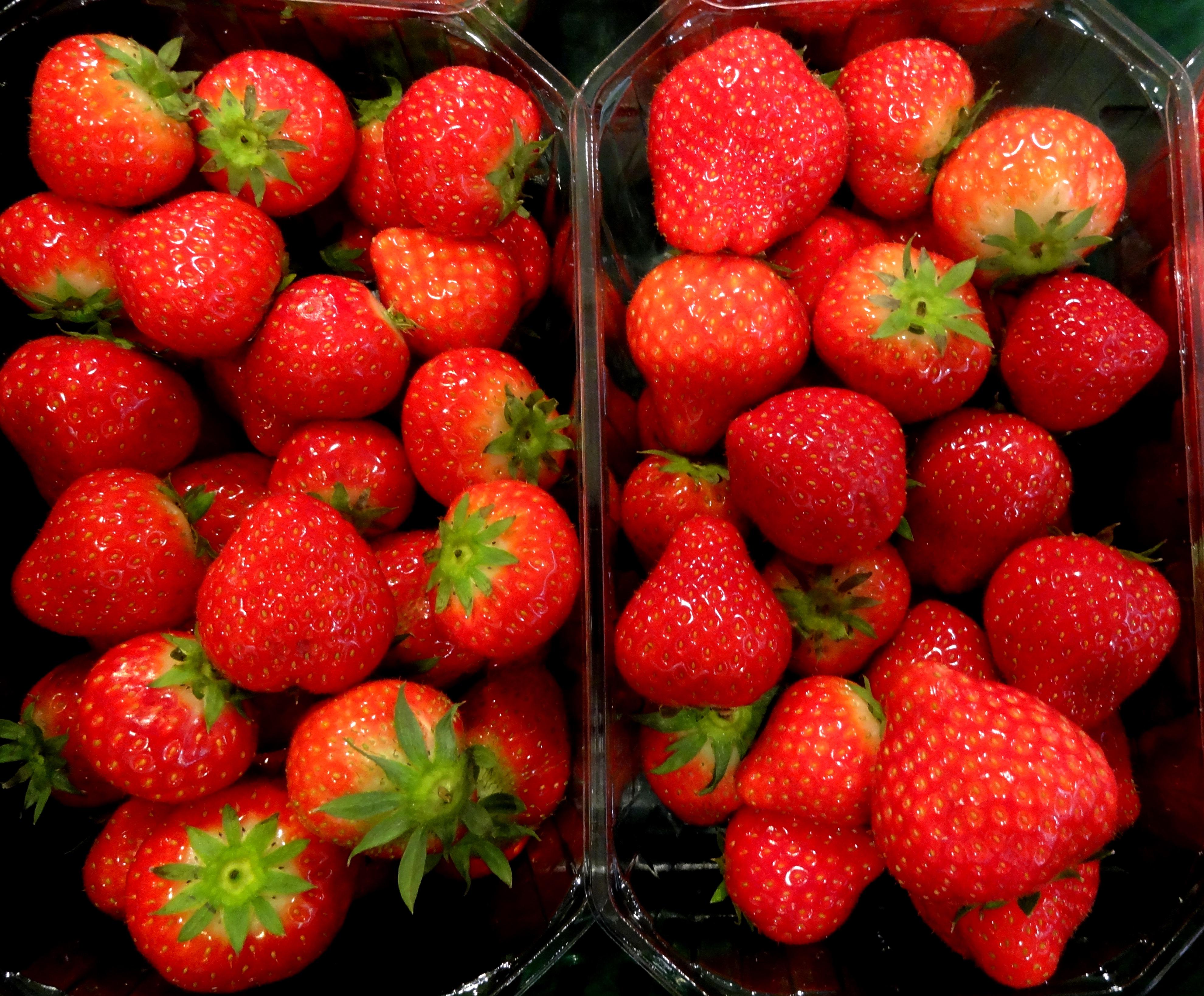 Geliebte Bei Erdbeeren für einen guten Start sorgen | Industrieverband Agrar @XP_79