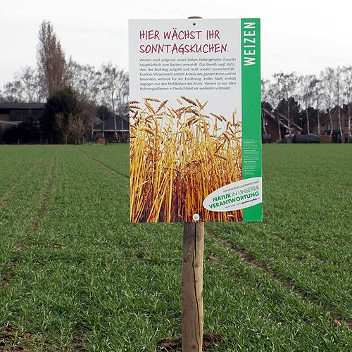 Ohne Kälte keine Körner | Industrieverband Agrar