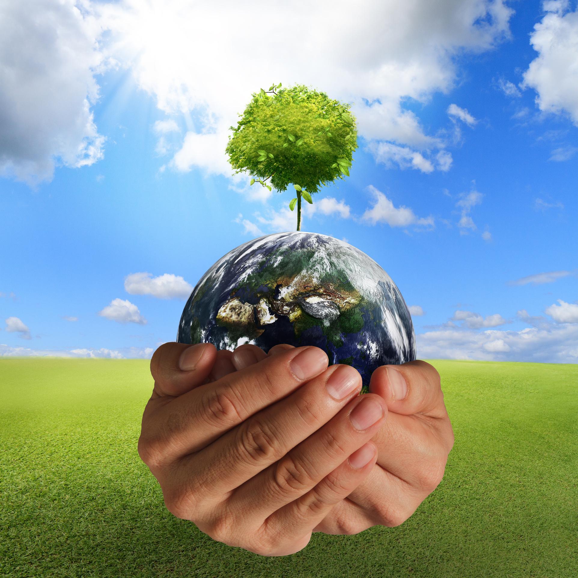 Am 5. Juni ist der Tag der Umwelt   Industrieverband Agrar
