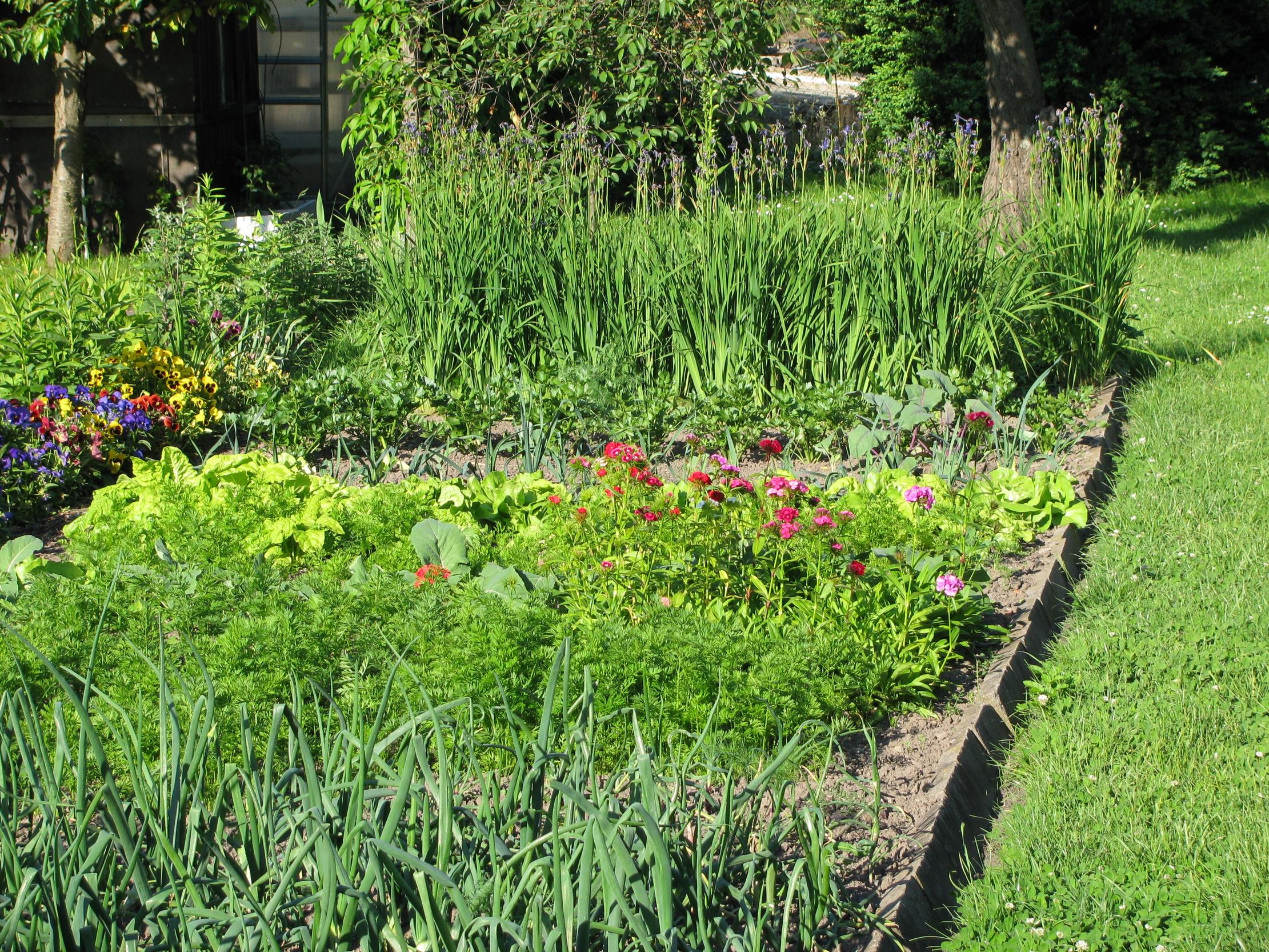 auch im heimischen garten pflanzen brauchen schutz industrieverband agrar. Black Bedroom Furniture Sets. Home Design Ideas